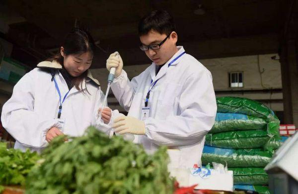 Ilmuwan Tiongkok Berhasil Kembangkan Teknologi Deteksi Cepat Residu Pestisida